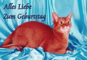 Geburtstagsgr e tiere motive for Digitale weihnachtskarten gratis