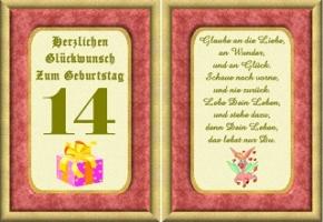 14 Jahre Vierzehn 14 Geburtstag Madchen Geschenke Frauen Premium